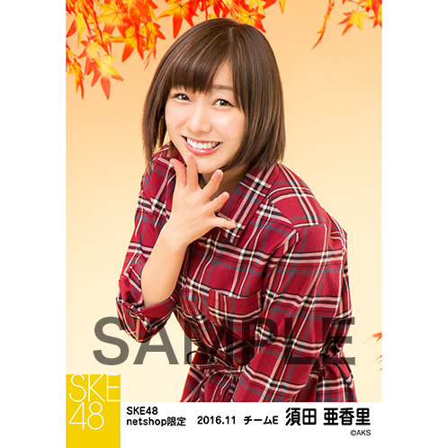 SKE48 2016年11月度 net shop限定個別生写真「秋の行楽」5枚セット 須田亜香里