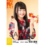 SKE48 2016年11月度 net shop限定個別生写真「秋の行楽」5枚セット 和田愛菜
