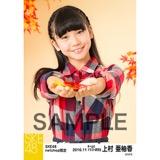 SKE48 2016年11月度 net shop限定個別生写真「秋の行楽」5枚セット 上村亜柚香