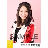 SKE48 2016年11月度 個別生写真「春コンサート ブルゾン」5枚セット 山田樹奈