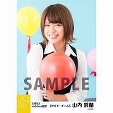 SKE48 2016年11月度 net shop限定個別生写真「学園祭」5枚セット 山内鈴蘭