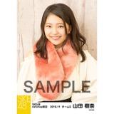 SKE48 2016年11月度 net shop限定個別ランダム生写真5枚セット 山田樹奈