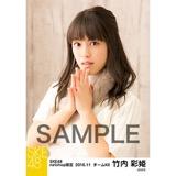 SKE48 2016年11月度 net shop限定個別ランダム生写真5枚セット 竹内彩姫