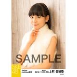 SKE48 2016年11月度 net shop限定個別ランダム生写真5枚セット 上村亜柚香