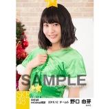 SKE48 2016年12月度 net shop限定個別生写真「クリスマス」5枚セット 野口由芽