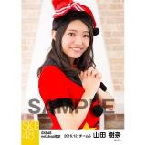 SKE48 2016年12月度 net shop限定個別生写真「クリスマス」5枚セット 山田樹奈