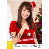 SKE48 2016年12月度 net shop限定個別生写真「クリスマス」5枚セット 内山命
