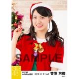 SKE48 2016年12月度 net shop限定個別生写真「クリスマス」5枚セット 菅原茉椰
