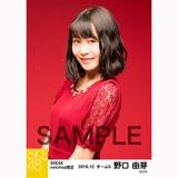 SKE48 2016年12月度 net shop限定個別生写真「クリスマスII」5枚セット 野口由芽