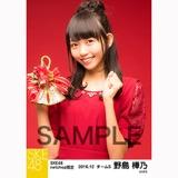 SKE48 2016年12月度 net shop限定個別生写真「クリスマスII」5枚セット 野島樺乃