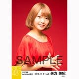 SKE48 2016年12月度 net shop限定個別生写真「クリスマスII」5枚セット 矢方美紀