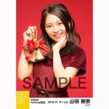 SKE48 2016年12月度 net shop限定個別生写真「クリスマスII」5枚セット 山田樹奈