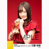SKE48 2016年12月度 net shop限定個別生写真「クリスマスII」5枚セット 江籠裕奈