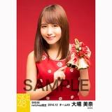 SKE48 2016年12月度 net shop限定個別生写真「クリスマスII」5枚セット 大場美奈