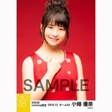SKE48 2016年12月度 net shop限定個別生写真「クリスマスII」5枚セット 小畑優奈