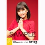 SKE48 2016年12月度 net shop限定個別生写真「クリスマスII」5枚セット 北野瑠華