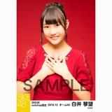 SKE48 2016年12月度 net shop限定個別生写真「クリスマスII」5枚セット 白井琴望