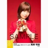 SKE48 2016年12月度 net shop限定個別生写真「クリスマスII」5枚セット 高柳明音