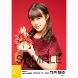 SKE48 2016年12月度 net shop限定個別生写真「クリスマスII」5枚セット 竹内彩姫
