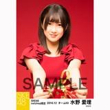 SKE48 2016年12月度 net shop限定個別生写真「クリスマスII」5枚セット 水野愛理