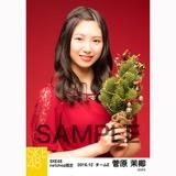 SKE48 2016年12月度 net shop限定個別生写真「クリスマスII」5枚セット 菅原茉椰