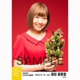 SKE48 2016年12月度 net shop限定個別生写真「クリスマスII」5枚セット 須田亜香里