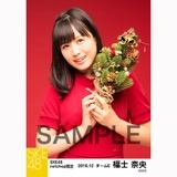 SKE48 2016年12月度 net shop限定個別生写真「クリスマスII」5枚セット 福士奈央
