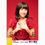 SKE48 2016年12月度 net shop限定個別生写真「クリスマスII」5枚セット 相川暖花