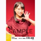 SKE48 2016年12月度 net shop限定個別生写真「クリスマスII」5枚セット 片岡成美