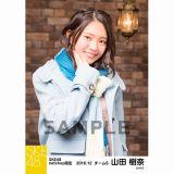 SKE48 2016年12月度 net shop限定個別ランダム生写真5枚セット 山田樹奈