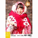 SKE48 2016年12月度 net shop限定個別ランダム生写真5枚セット 相川暖花