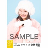 SKE48 2017年1月度 net shop限定個別ランダム生写真5枚セット 山田樹奈