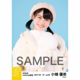 SKE48 2017年1月度 net shop限定個別ランダム生写真5枚セット 小畑優奈