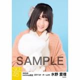 SKE48 2017年1月度 net shop限定個別ランダム生写真5枚セット 水野愛理