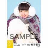SKE48 2017年1月度 net shop限定個別ランダム生写真5枚セット 相川暖花