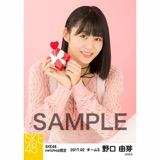 SKE48 2017年2月度 net shop限定個別生写真「バレンタイン」5枚セット 野口由芽