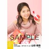 SKE48 2017年2月度 net shop限定個別生写真「バレンタイン」5枚セット 山田樹奈