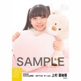 SKE48 2017年2月度 net shop限定個別ランダム生写真5枚セット 上村亜柚香