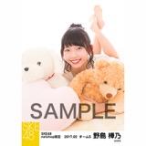 SKE48 2017年2月度 net shop限定個別ランダム生写真5枚セット 野島樺乃