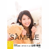 SKE48 2017年2月度 net shop限定個別ランダム生写真5枚セット 山田樹奈
