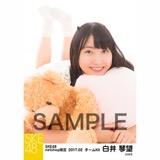 SKE48 2017年2月度 net shop限定個別ランダム生写真5枚セット 白井琴望