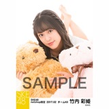 SKE48 2017年2月度 net shop限定個別ランダム生写真5枚セット 竹内彩姫