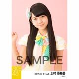 SKE48 2017年3月度 個別生写真「ストライプワンピース」衣装5枚セット 上村亜柚香
