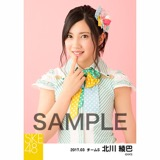 SKE48 2017年3月度 個別生写真「ストライプワンピース」衣装5枚セット 北川綾巴