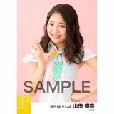 SKE48 2017年3月度 個別生写真「ストライプワンピース」衣装5枚セット 山田樹奈