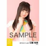 SKE48 2017年3月度 個別生写真「ストライプワンピース」衣装5枚セット 江籠裕奈