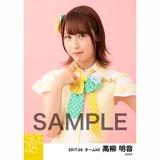 SKE48 2017年3月度 個別生写真「ストライプワンピース」衣装5枚セット 高柳明音