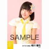 SKE48 2017年3月度 個別生写真「ストライプワンピース」衣装5枚セット 相川暖花