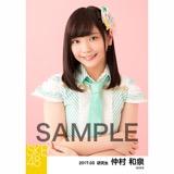 SKE48 2017年3月度 個別生写真「ストライプワンピース」衣装5枚セット 仲村和泉