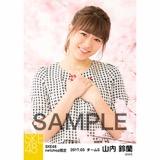 SKE48 2017年3月度 net shop限定個別生写真「さくら」5枚セット 山内鈴蘭